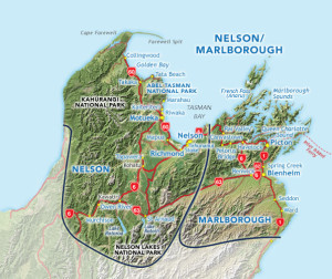Visit the Nelson region in a Kiwi Road Trips Backpacker Campervan